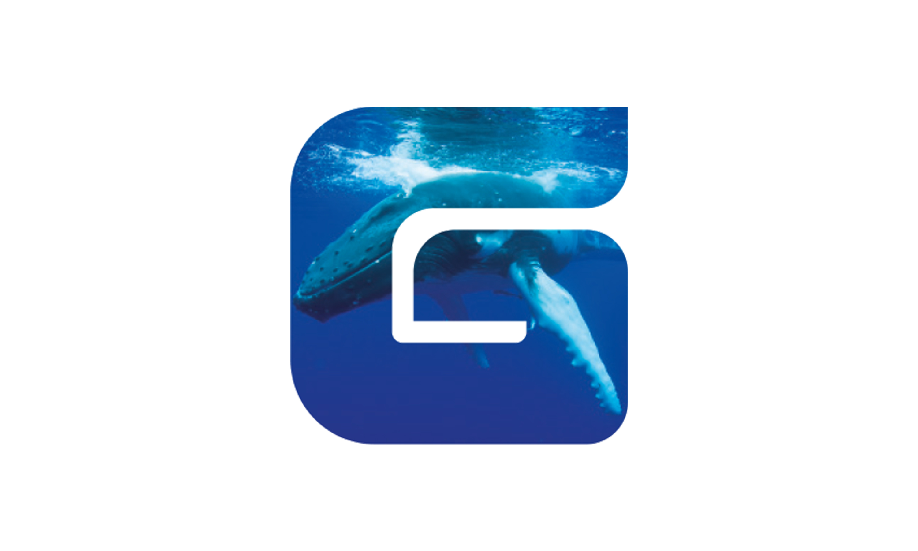 Branding by Neon - designed by Dana Robertson - GEMS Education - GEMS Education G icon featuring a whale within the letterform