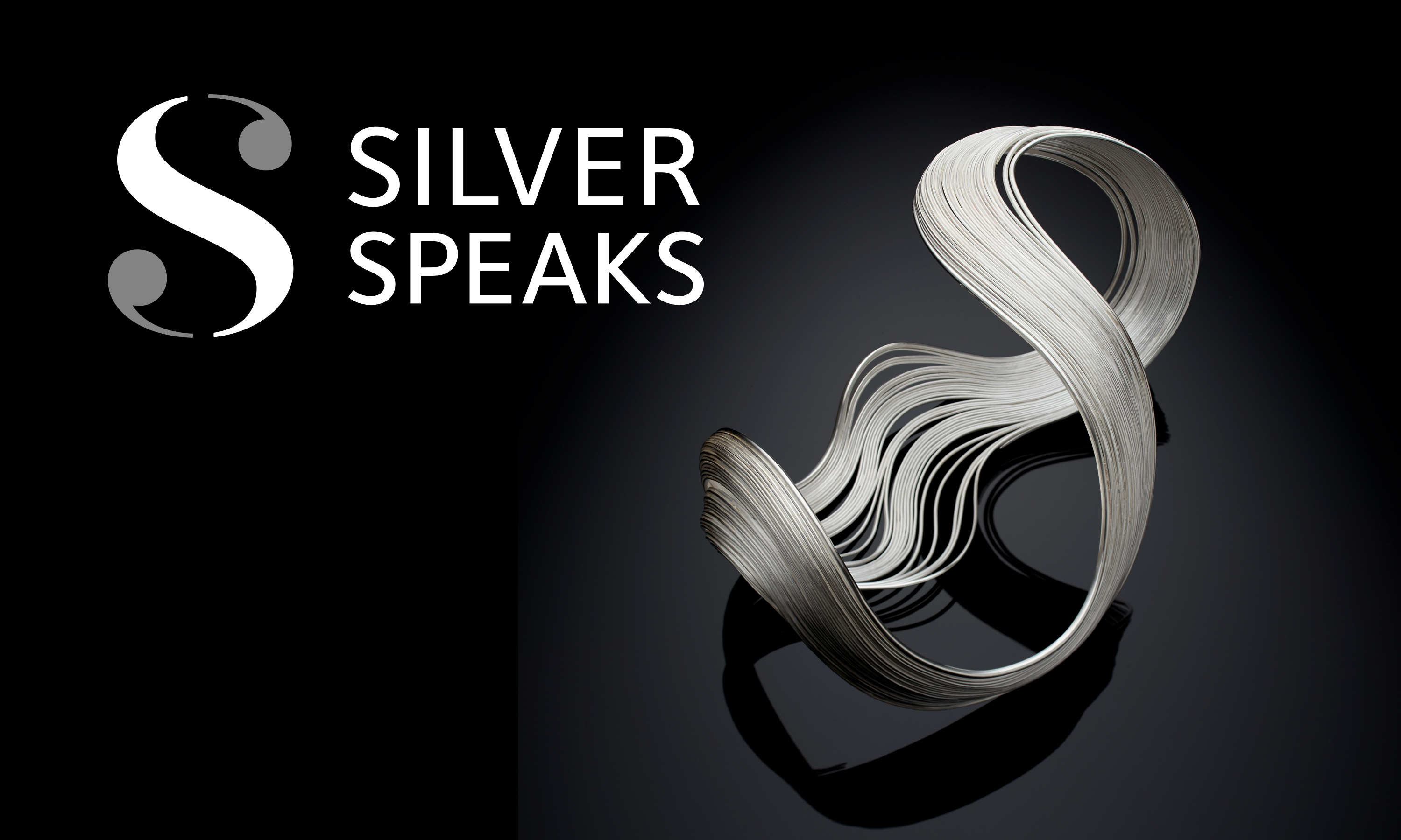 Branding and website design by Neon - designed by Dana Robertson - Silver Speaks exhibition logo with piece of silver work