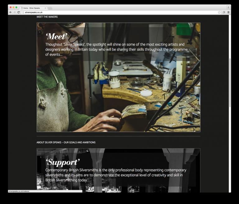 Silver Speaks website detail by Neon