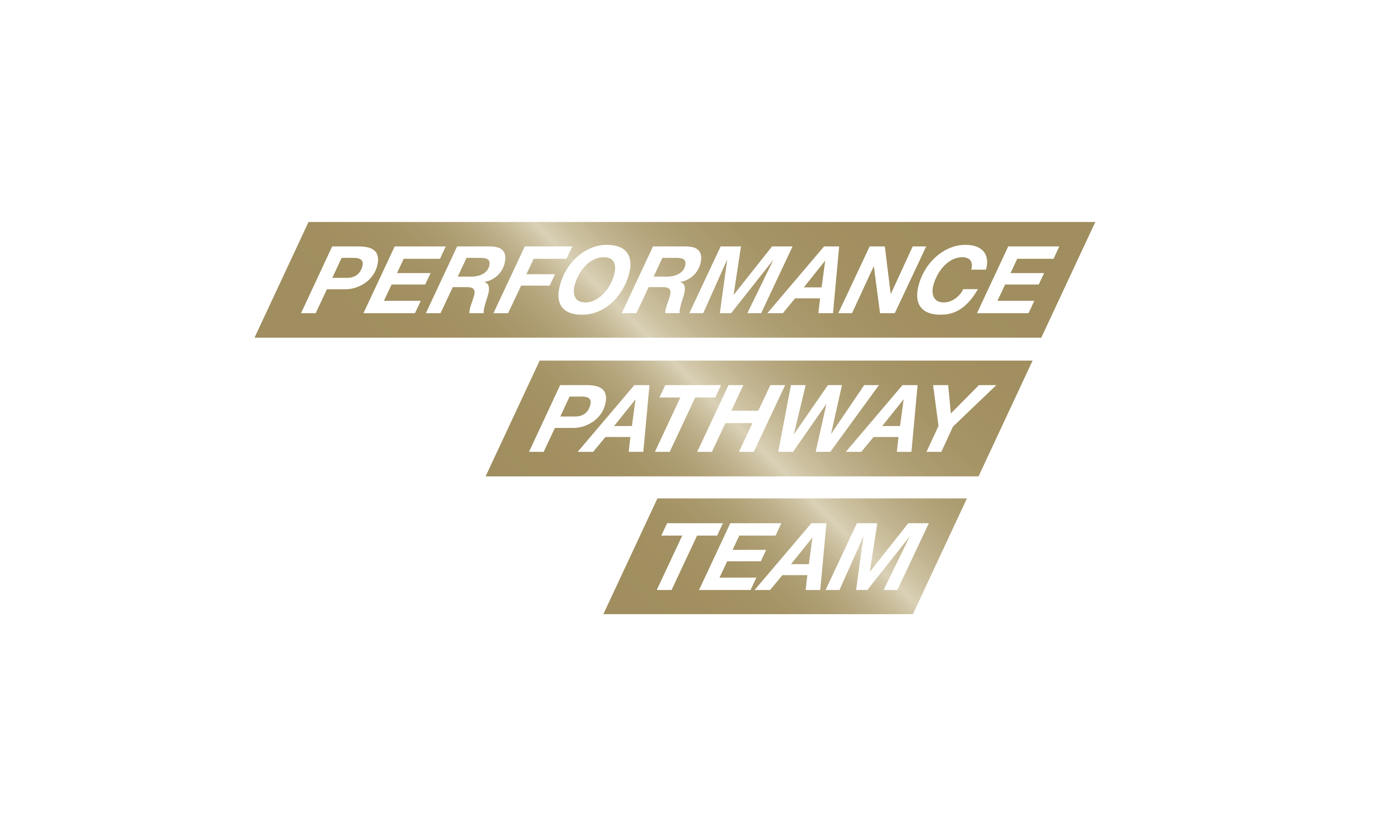 Branding by Neon - Sports branding - UK Sport Performance Pathway Team logo designed by Dana Robertson