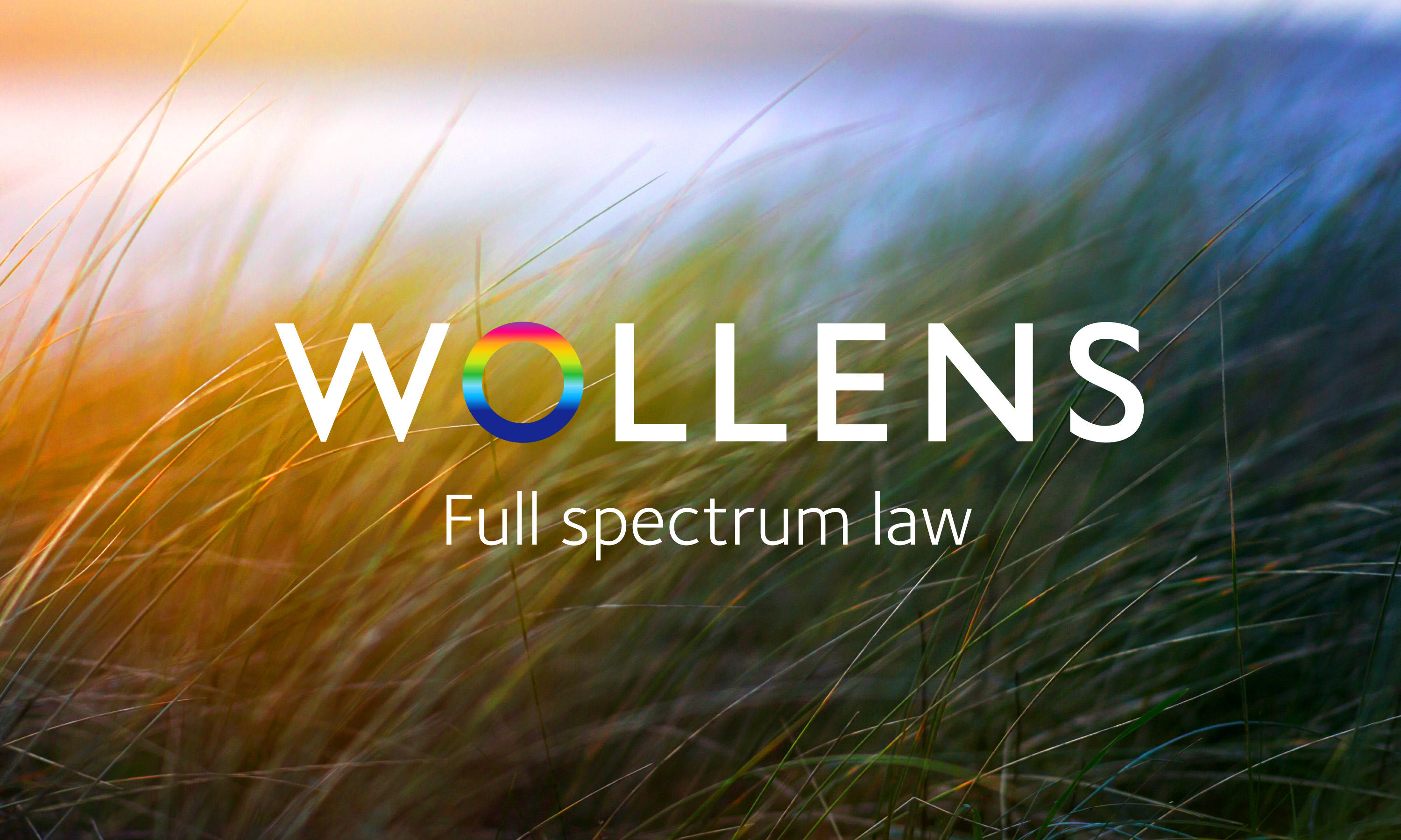Branding by Neon Wollens Solicitors Devon, new Wollens brand mark over image of dune grasses designed by Dana Robertson